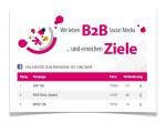 Facebook B2B Ranking :: Screenshot