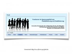 Screenshot FlinK-Projekt