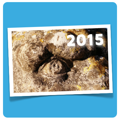 illustration 2015 planung